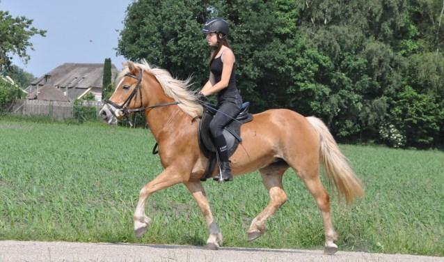 Deelname aan de Bronckhorster Paardenmeerdaagse is ook voor ruiters. Foto: Theo Jansen