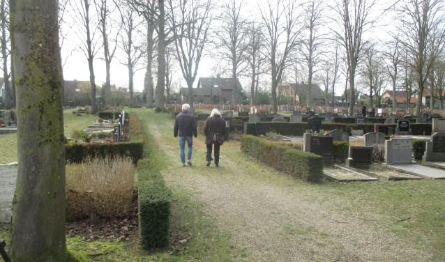 Er zijn op 26 mei rondleidingen langs de graven van oorlogsslachtoffers op de Algemene Begraafplaats. Foto: PR