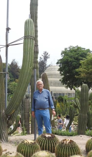 Henk Viscaal tussen de metershoge cactussen in China. Foto: Henk Viscaal