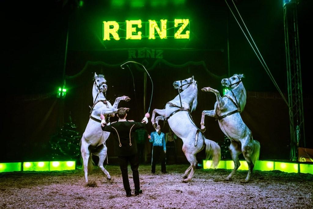 Paarden tijdens act. Foto: PR  © Achterhoek Nieuws b.v.