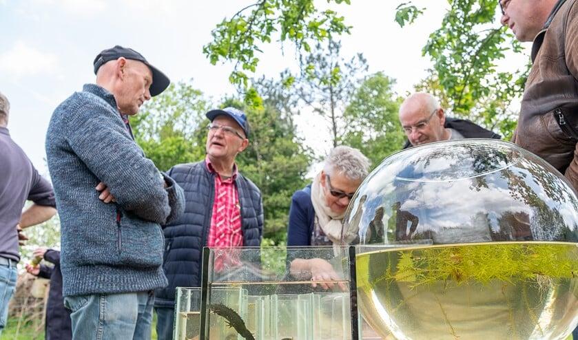 Aandachtige bezoekers van de open dag in de Zumpe; op voorgrond de zeldzame kamsalamander, die even later werd teruggezet in de poel. Foto: Burry van den Brink