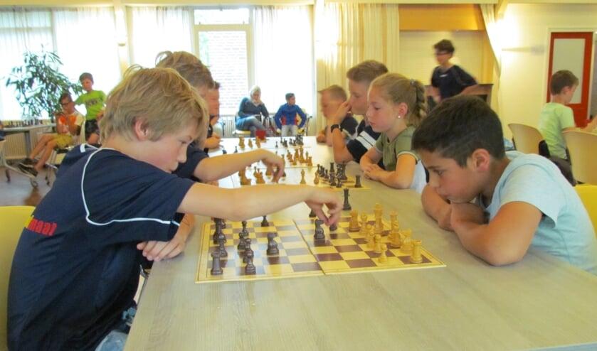 Concentratie bij het schoolschaaktoernooi. Foto: Rob Stevens