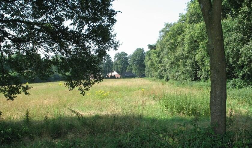 Landschap in de Haart. Foto: Bernhard Harfsterkamp