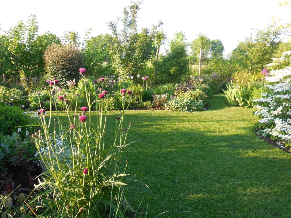 De tuin van Ada en Gertie Leuvenink. Foto: Gertie Leuvenink Foto: Gertie Leuvenink © Achterhoek Nieuws b.v.