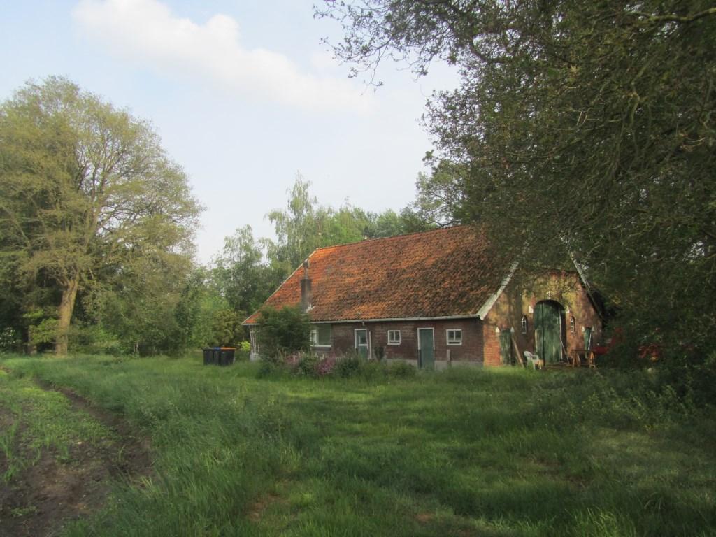 Stadstuinbouw rond de boerderij. Foto: Bernhard Harfsterkamp  © Achterhoek Nieuws b.v.