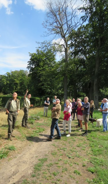 Beheerder Abbink (l) en boswachter Ter Horst (tweede van links) geven uitleg; op de achtergrond is goed te zien in welke slechte staat sommige bomen verkeren.Foto: Bert Vinkenborg