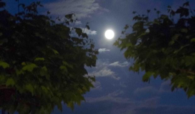 De gewone maan zoals op deze foto zal binnekort een stuk groter lijken