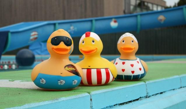 Badeendjes-race ten behoeve van een nieuwe glijbaan voor Zwembad de Zien