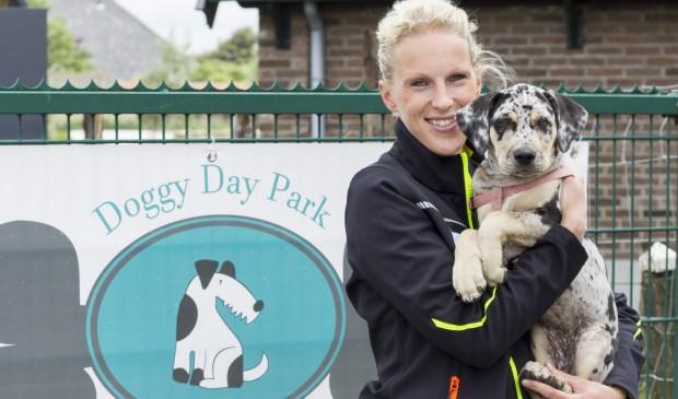 Marlon Boogaard op Doggydaypark, de ideale dagopvang voor honden!