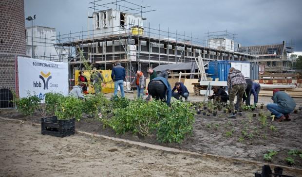 Vereniging Groei en Bloei, medewerkers van de gemeente Heiloo en toekomstige bewoners planten de BioBorder aan rondom de schoorsteen.