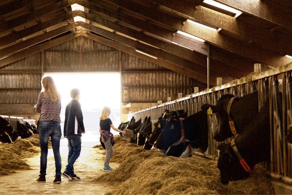 Foto: Marloes Blok / Marloesblokfotografie.nl © Uitkijkpost Media Bv.