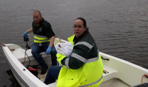 Medewerkers van Dierenambulance Kennemerland redden een Kiekendief.