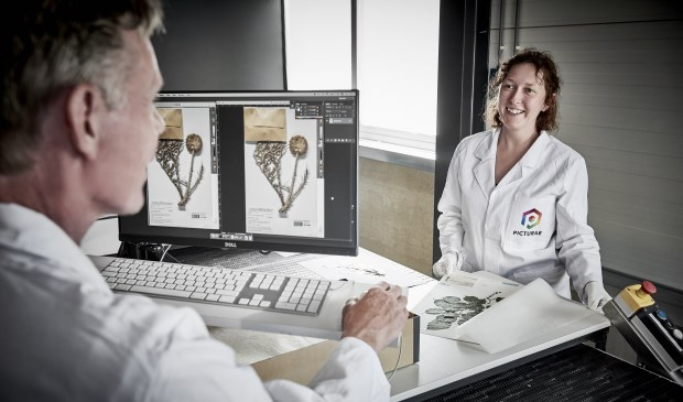 Picturae is marktleider op het gebied van digitaliseren van o.a. natuurhistorisch materiaal.