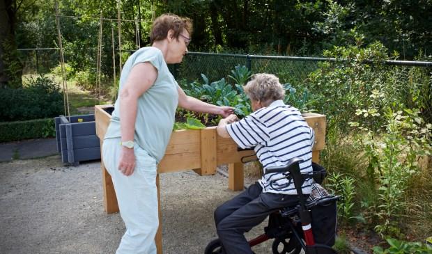 Vrijwilligers nemen ouderen mee de tuin in om samen te tuinieren.