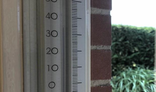 Hoge temperaturen kunnen vervelende gevolgen hebben voor huisdieren