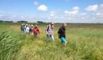 Rondleidingen stichting 'de Hooge Weide'