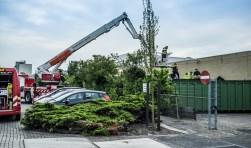 Hoogwerker ingezet om chauffeur te redden