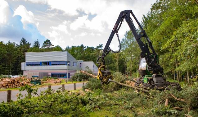Sinds maandag is de grijpmachine bezig in het gebied van de Monnikenberg.