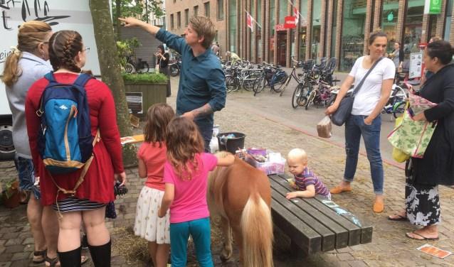 Je kunt een bankje ook 'opleuken'  met pony's, zoals hier bij het winkelcentrum.