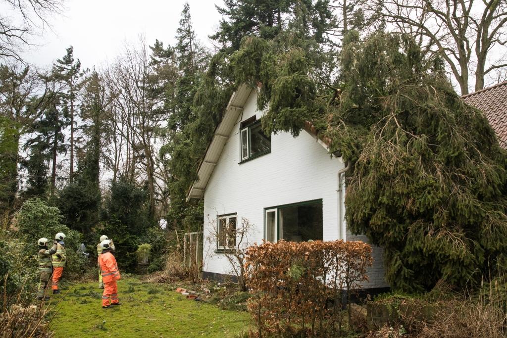 Baarns weekblad code rood in baarn: boom waait om villa