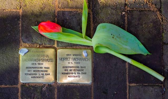 In februari 2017 zijn de struikelstenen voor het echtpaar Bacharach gelegd in de Dalweg.