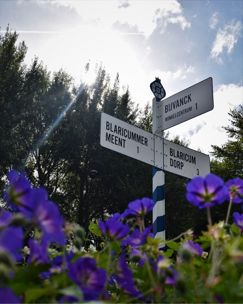 ANWB-paal op de rotonde in de Bijvanck. Foto:  Debbie Croonen-Bakker  © Enter Media