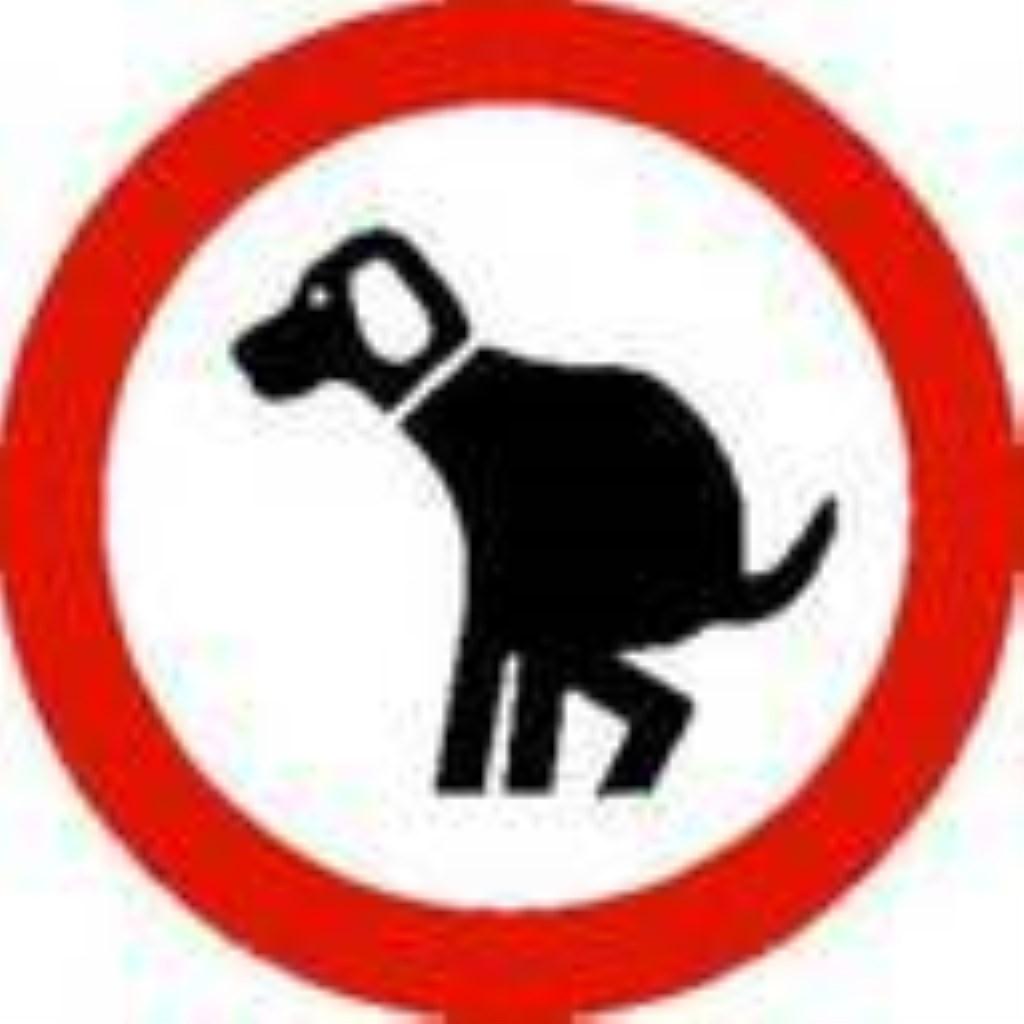 Verboden te poepen voor honden.  © Enter Media