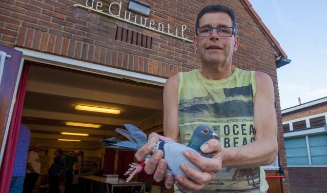 Voorzitter van PV De Zwaluw Ronald Heesen met een postduif die klaar is voor de reis.  Foto's: Bob Awick © Enter Media