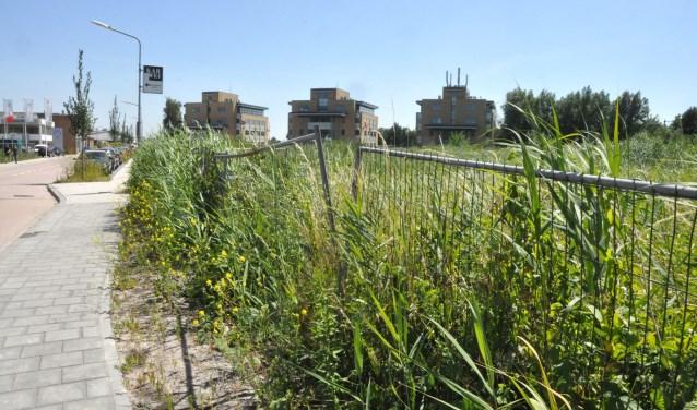 Bouwlocatie ligt te dicht langs de enige toegangsweg naar de Nijverheidslaan, zegt Joop Bos.