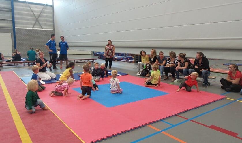 Er is van alles te doen voor kinderen in sporthal en zwembad De Meent.