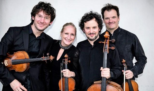 De nieuwe bezetting van het Navarra String Quartet.