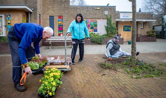 Een aantal buurtbewoners zette de oude 'Lelie' deze week in de bloemen.
