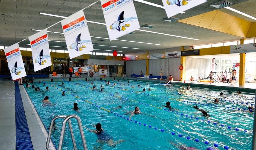 Baantjes trekken tijdens zwemvierdaagse.