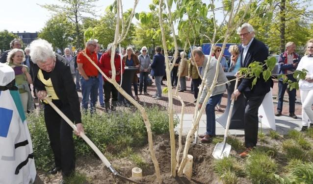 De drachtboom bij het BEL-kantoor in Eemnes.