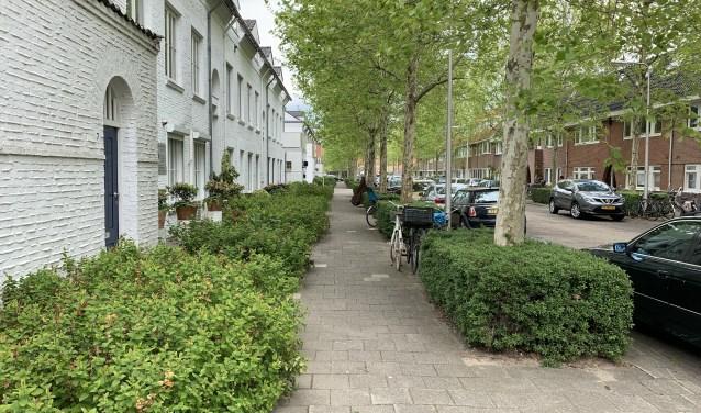 De Jan Bertsstraat is een van de straten waar struikelstenen worden gelegd.