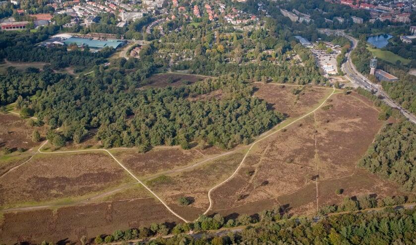 In en rond de hei en het bos is het brandgevaar hoog door droogte.