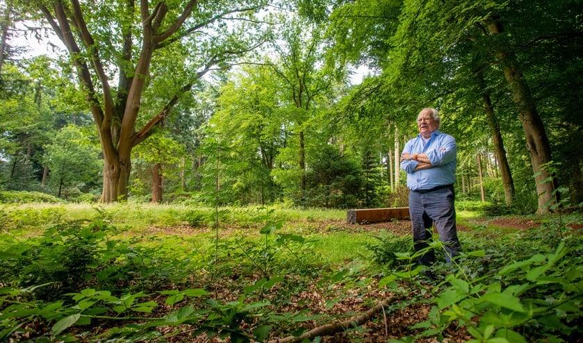 De favoriete plek van Bert Barkmeijer is bij deze boom. 'Sprookjesachtig.'