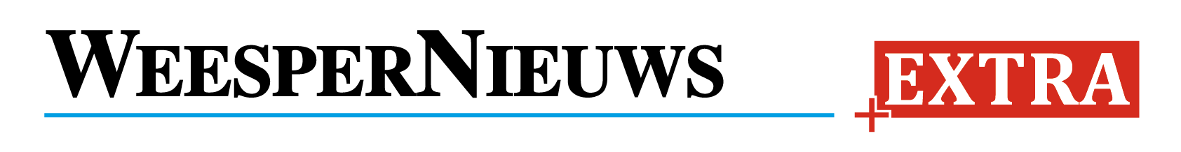 Logo diemernieuws.nl
