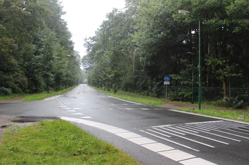 Het verbindingsdeel tussen de Gezichtslaan en de Professor Bronkhorstlaan is later aangelegd. [foto Henk van de Bunt]  © De Vierklank