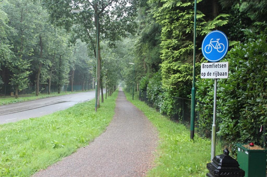 In 2010 zijn er nieuwe fietspaden aan het beide zijden van het noordelijkst deel van de Gezichtslaan aangelegd. [foto Henk van de Bunt]  © De Vierklank