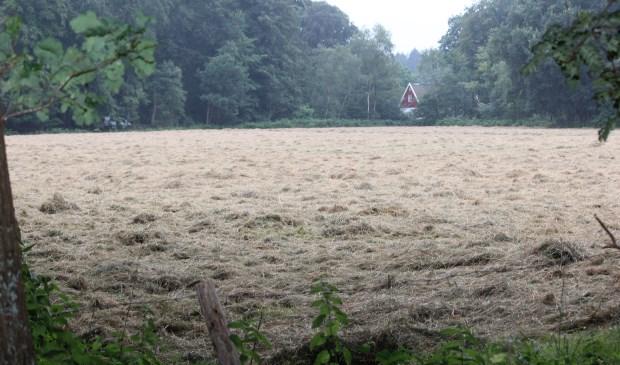 Dit weiland is de beoogde locatie voor een theehuis. Op de achtergrond de Embranchementsweg en de bebouwing Vuurseweg 1.