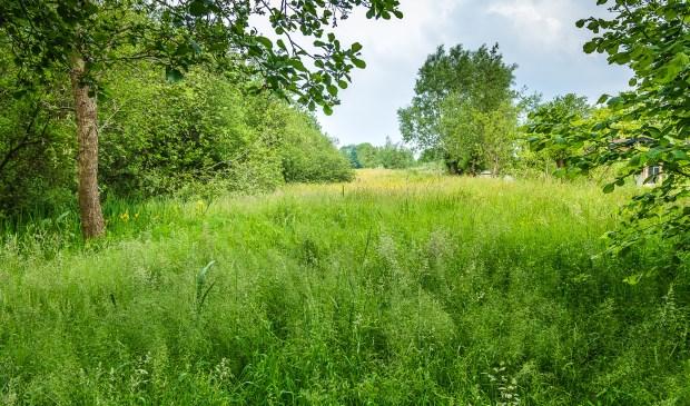De prachtige tuin gaat naadloos over in de zodden, die beheerd worden doorStaatsbosbeheer. (foto Joyce Reimu - mei 2016)