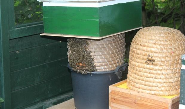 De bijen weten Kastanjelaan 1 in Groenekan goed te vinden.