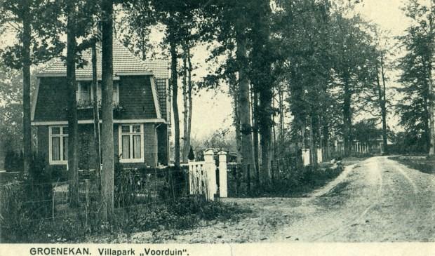 Oorspronkelijk werd de huidige Lindenlaan als Babelsteeg aangeduid en werd het pad in het verlengde ervan 'Westlaan' genoemd. B. en W. van Maartensdijk besloten in 1926 de Westlaan te vernoemen in Kastanjelaan. Het huis (Kastanjelaan 3) op de foto werd in 1920 gebouwd en bood vanaf 1937 onderdak aan de huisarts dokter Buisman. In 1993 is het grondig gerestaureerd. In datzelfde jaar genoemd De Meuk. Betekenis naam: bewaarplaats voor appels en