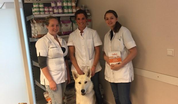 Het team van Dierenkliniek Midden Nederland staat pal achter de voedingslijn van Calibra.