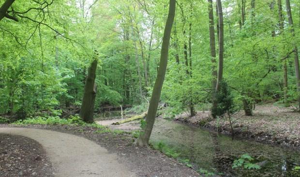 Landgoed Oostbroek is vrij toegankelijk en kent een rijke geschiedenis en waardevolle natuur.