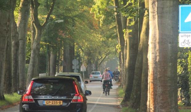 Auto's en fietsers wringen zich langs elkaar heen in het nauwe deel van de Jan Steenlaan tussen de Rembrandtlaan en de Jan van Eycklaan.