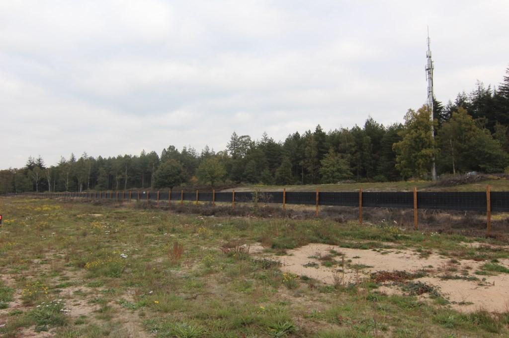 De keuze voor het specifieke groen past in de omgeving. Voor de A27 zal dit voornamelijk bestaan uit heide, jonge struiken, bomen en grotere laanbomen.