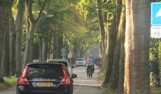Er komt een verbodsgebied vrachtverkeer voor dit gedeelte van de Jan Steenlaan.  © De Vierklank