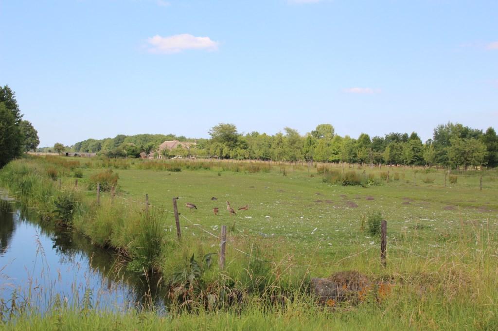 Het gebied ligt aan de oostkant van Groenekan en is ongeveer 12 hectare groot, vergelijkbaar met ongeveer 24 voetbalvelden.   © De Vierklank